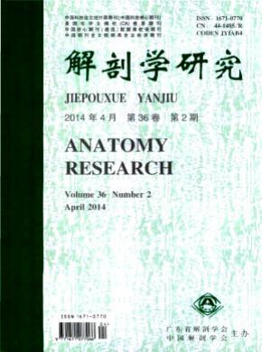 解剖學研究