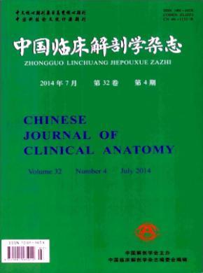 中國臨床解剖學