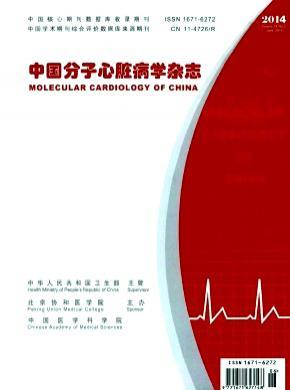 中國分子心臟病學