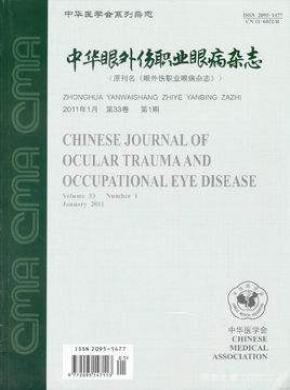 中華眼外傷職業眼病